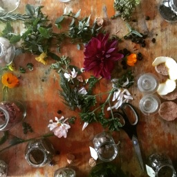 Amateur Guide to Making Gin (and a Recipe)